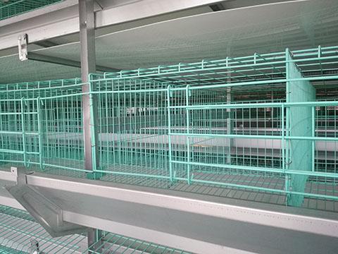 клеточное оборудование для выращивания бройлеров