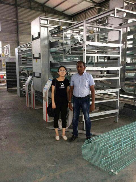 завод изготовления клеточной батареи для кур несушек