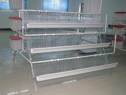 клетки для кур несушек цена