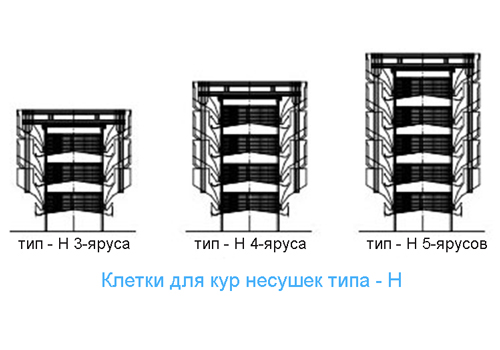Тип Н клеточная батарея для кур несушек