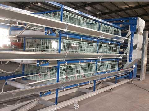 купить клеточное оборудование для выращивания кур несушек